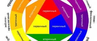Гармония цветов: как подобрать правильную цветовую гамму в букете