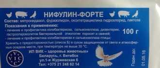 Нифулин-форте для голубей: состав препарата, инструкция по применению